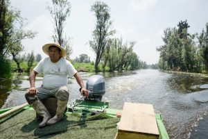 Culinary Backstreets: Xochimilco, Keeping Mexico City's Agricultural Treasure Afloat